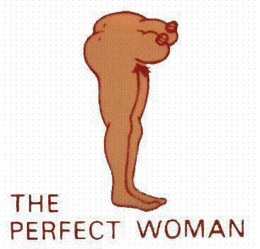 la-donna-perfetta