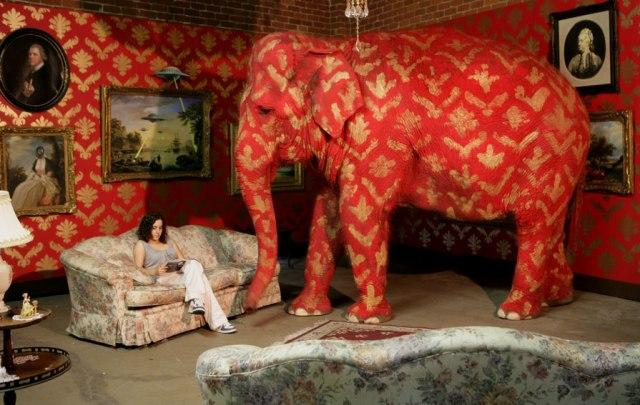 elefantenella-stanza