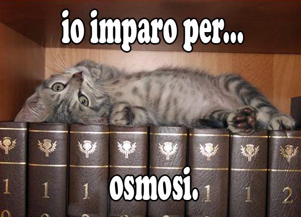 osmosi5